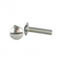 SCREW MUSHROOM SLOTTED STAINLESS STEEL A2 4X16 NFE 25129 1 FENTE