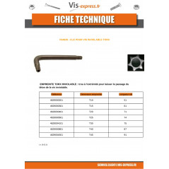 KEY FOR SCREW SECURITY T30